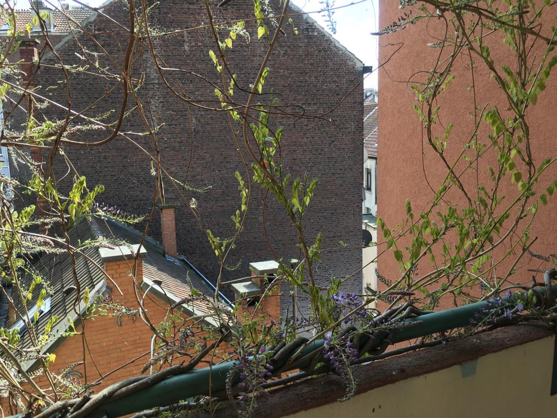 Appartement - Saint-Gilles - #2545898-10