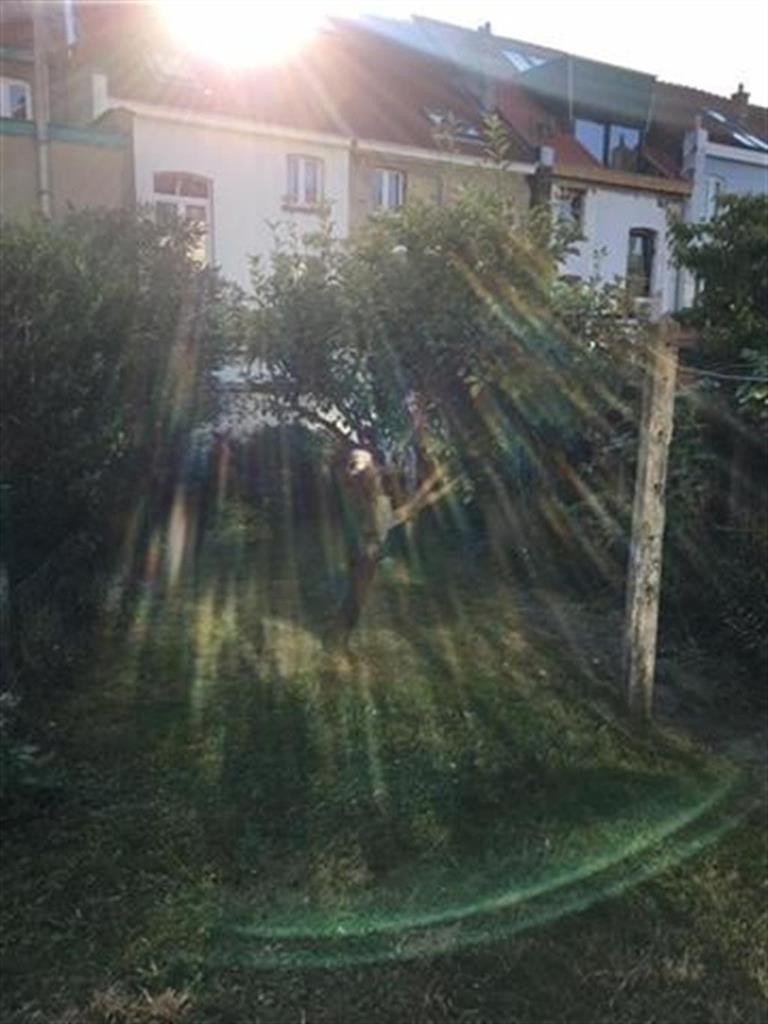Maison - Woluwe-Saint-Pierre - #3855840-5